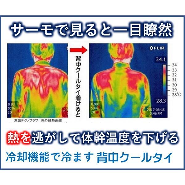 熱中症対策!汗の悩みに!背中のこもり熱を逃がして体を冷まし爽やかに、吸水速乾とコラボして涼感、保冷剤、水不要「背中クールタイ」Lサイズ|senakacool|05
