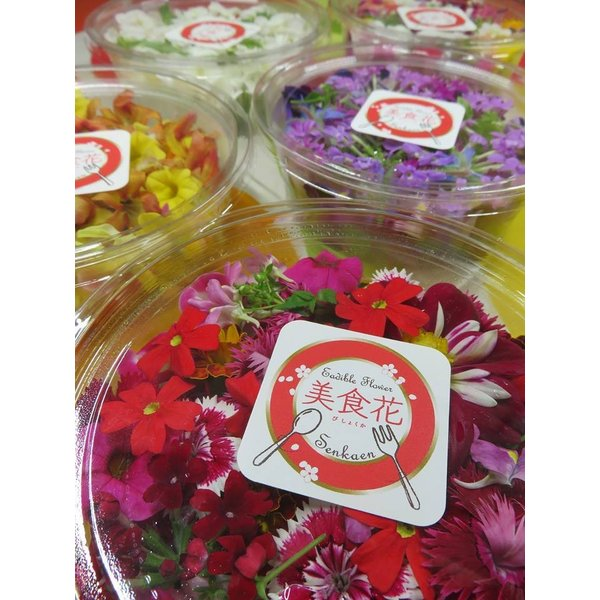 [美食花]エディブルフラワー(食用花)パック 花農家直送|senkaen