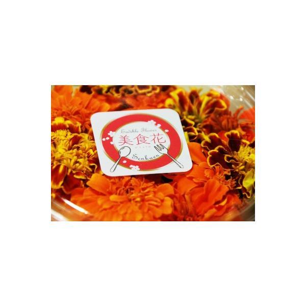 [美食花]エディブルフラワー(食用花)パック 花農家直送|senkaen|02