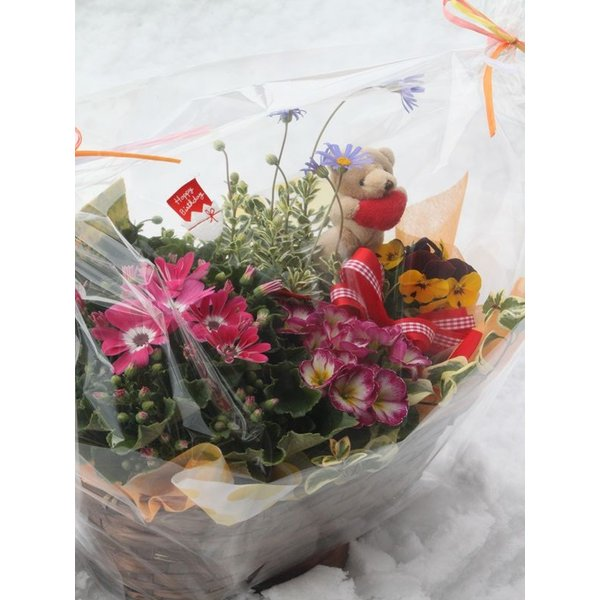 《花農家直送》[送料無料]千華園「フラワーンダフルバスケット」ギフト《大》|senkaen|05