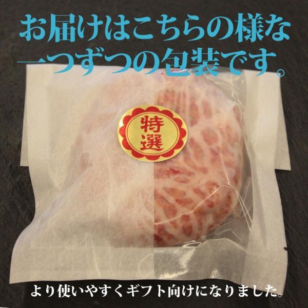 近江牛 かのこハンバーグ|sennaritei|02