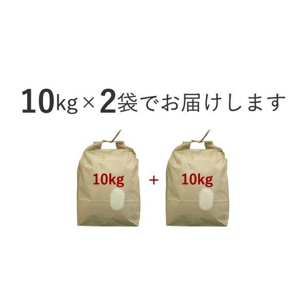 新米 コシヒカリ 20kg(10kg×2袋) 精米(白米) 広島県産 令和2年産 seramai 02