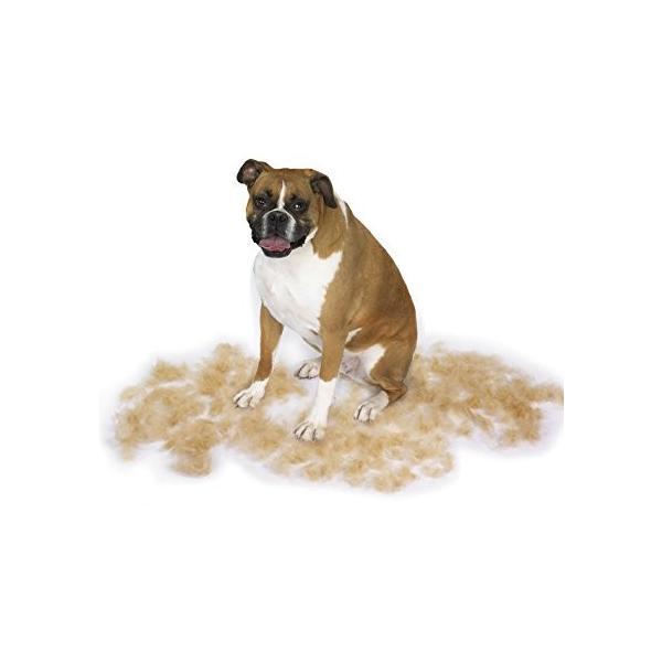 ファーミネーター 中型 犬 M 短毛種用 FURminator ペット ブラシ グルーミング 抜け毛 海外正規品|serekuto-takagise|02