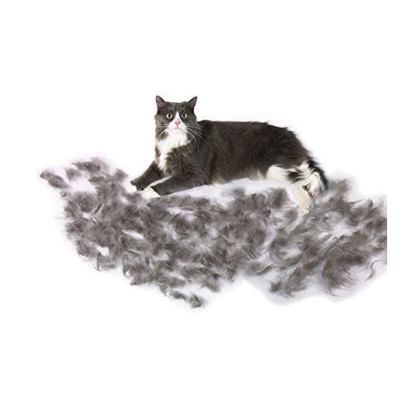 ファーミネーター 大型 猫 L 長毛種用 FURminator ペット ブラシ グルーミング 抜け毛 海外正規品 新型|serekuto-takagise|02
