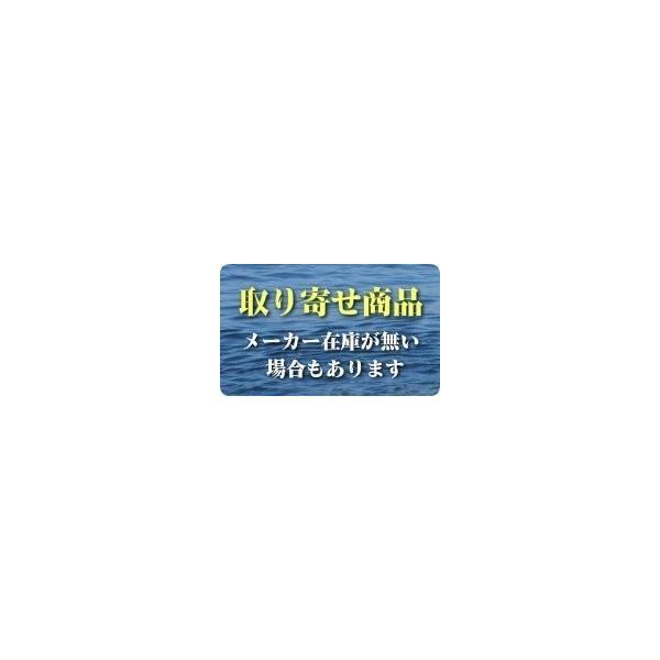 【SMT体感キャンペーン】 銀影競技メガトルク 急瀬抜 XH90・V SMT替穂先