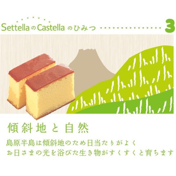 長崎カステラ 2本入 帰省 お土産 お盆 お供え|settella|05