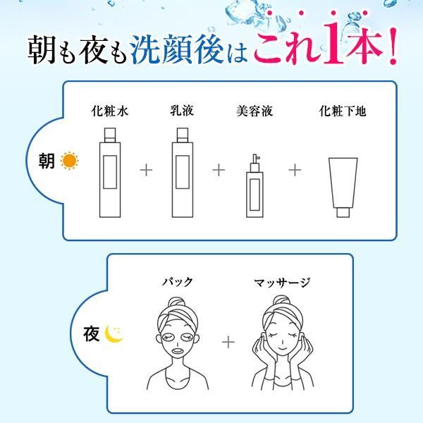 ソルジェオールインワンアクアセラム 美容液 1本6役の高機能処方 乾燥によるシワ・くすみに悩む年齢を重ねた肌に EGF様物質、IGF様物質、FGF様物質配合|seulege|05