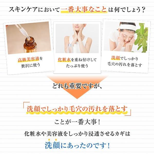 ソルジェリキッドセラムソープ 美容成分90%以上・天然由来成分100%配合 贅沢洗顔料 美肌成分の効果が最大限に発揮できるようにアシスト 健やかな肌へ|seulege|02