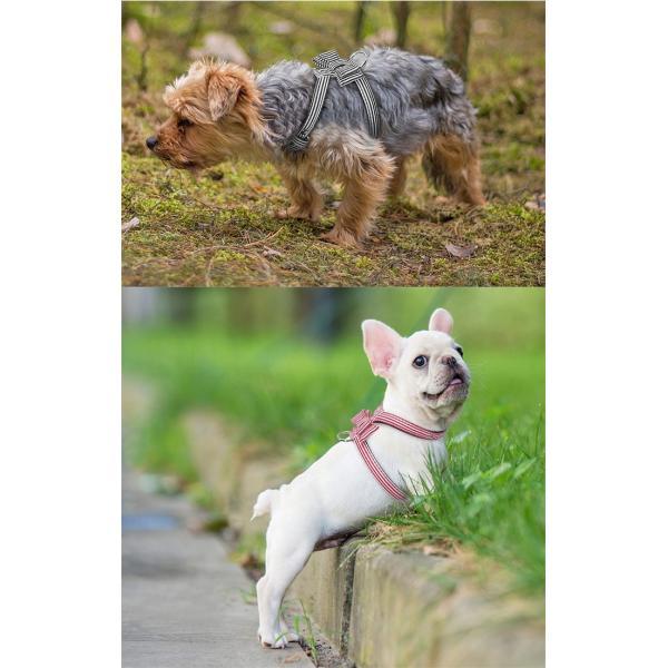 犬 猫 ハーネス チェック ペット 服  胴輪 キャット ドッグ リボン|sevenbridge|03