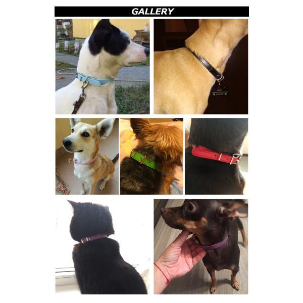 犬 猫 首輪 レザー 合皮 ペット 服  キャット ドッグ ペットグッズ 小型犬 中型犬 sevenbridge 04