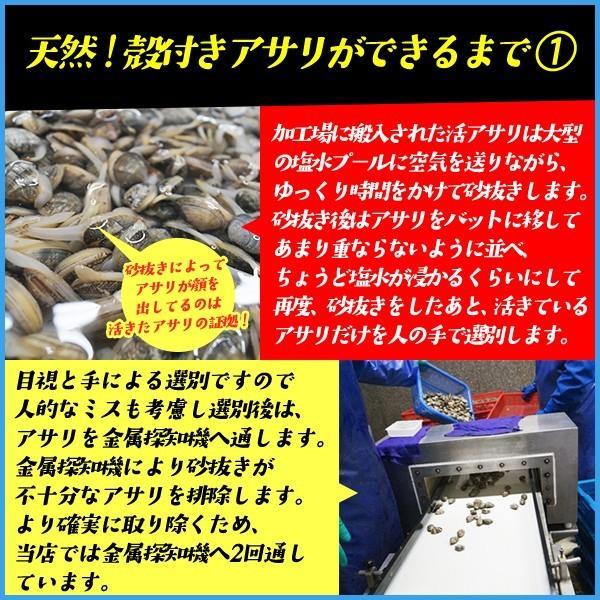 天然 殻付きアサリの旨味ボイル たっぷり500g×2パック あさり 貝 カイ 浅利|sfd-ymd|04