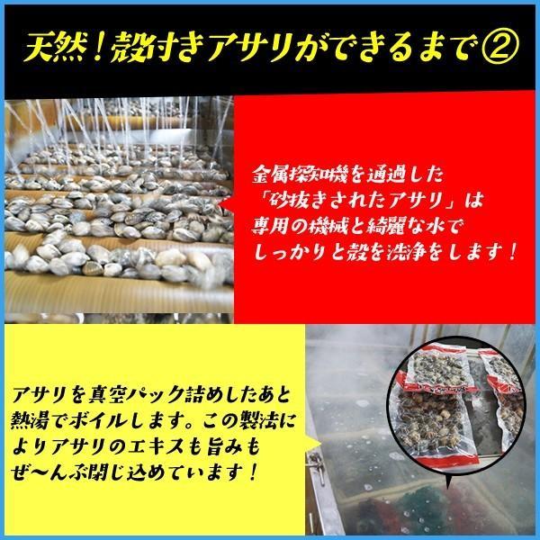 天然 殻付きアサリの旨味ボイル たっぷり500g×2パック あさり 貝 カイ 浅利|sfd-ymd|05