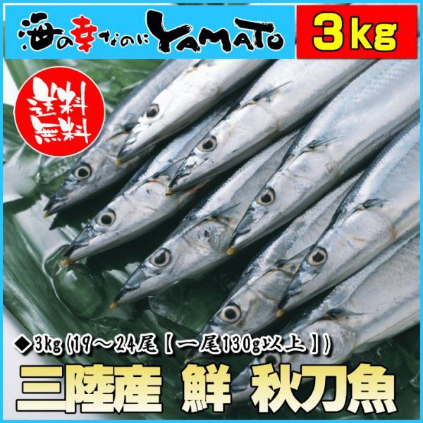 三陸産 鮮 秋刀魚 1尾130g以上保証 総重量3kg(19〜24尾入が目安となります) 生さんま サンマ|sfd-ymd