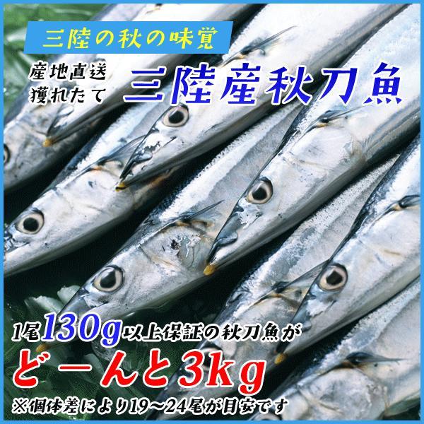 三陸産 鮮 秋刀魚 1尾130g以上保証 総重量3kg(19〜24尾入が目安となります) 生さんま サンマ|sfd-ymd|02