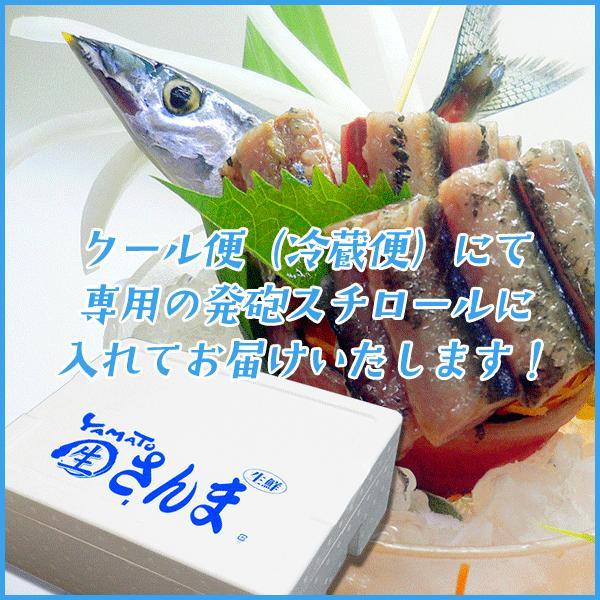 三陸産 鮮 秋刀魚 1尾130g以上保証 総重量3kg(19〜24尾入が目安となります) 生さんま サンマ|sfd-ymd|07