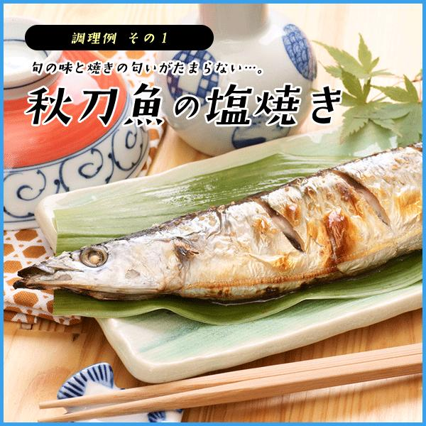 三陸産 鮮 秋刀魚 1尾130g以上保証 総重量3kg(19〜24尾入が目安となります) 生さんま サンマ|sfd-ymd|08