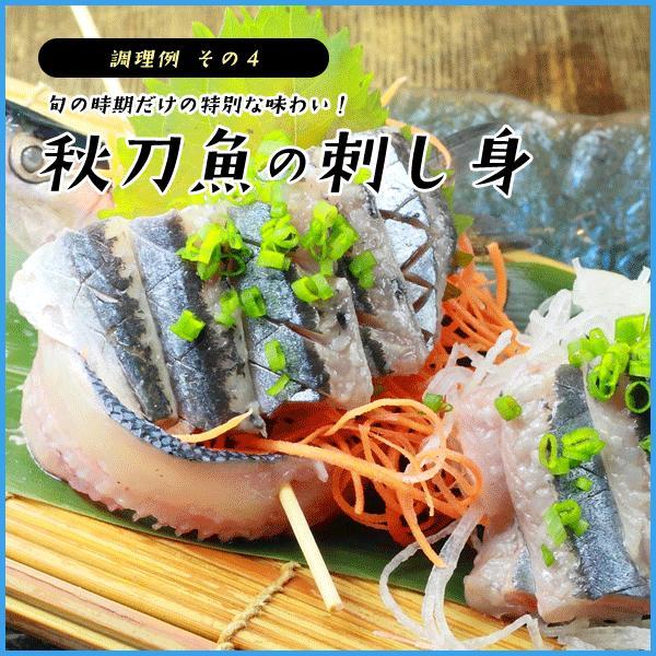 三陸産 鮮 秋刀魚 1尾130g以上保証 総重1.5kg(10〜12尾入が目安となります) 生さんま サンマ|sfd-ymd|11