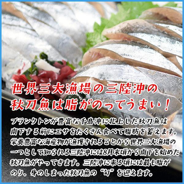 三陸産 鮮 秋刀魚 1尾130g以上保証 総重1.5kg(10〜12尾入が目安となります) 生さんま サンマ|sfd-ymd|03