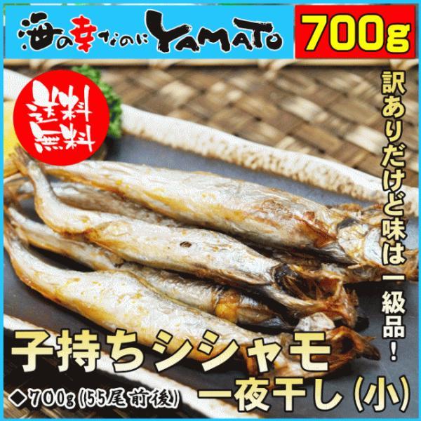 訳あり 子持ちシシャモ(小) 一夜干し 850g 約70尾前後入 ししゃも 柳葉魚 干物