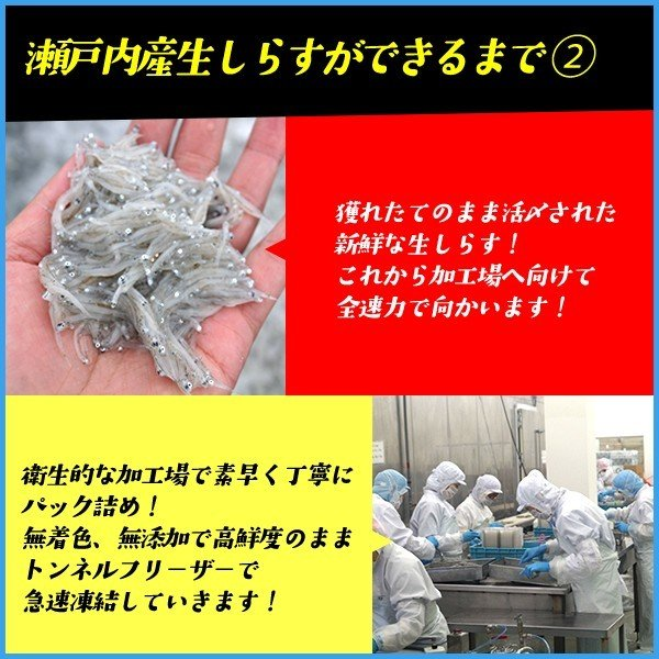 生しらす(シラス)200g 無添加 瀬戸内産 海鮮丼に 冷凍食品 無着色 お歳暮 sfd-ymd 05