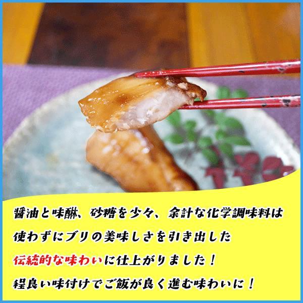 国産ブリの照り焼き 30g×5切入り 湯煎で温めるだけの簡単調理 ぶり 鰤 てりやき|sfd-ymd|03