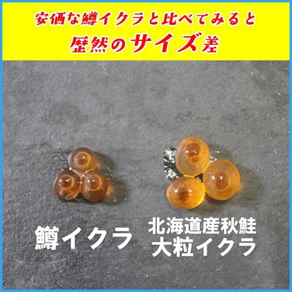いくら 北海道産秋鮭魚卵の醤油イクラ 500g 魚卵 贈答 海鮮 年末年始 お中元 プレゼント|sfd-ymd|03