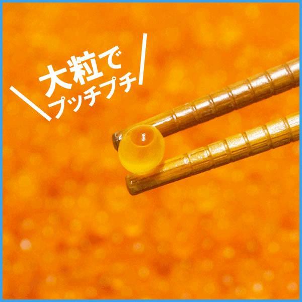 いくら 北海道産秋鮭魚卵の醤油イクラ 500g 魚卵 贈答 海鮮 年末年始 お中元 プレゼント|sfd-ymd|05