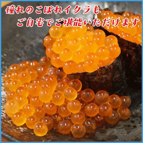 いくら 北海道産秋鮭魚卵の醤油イクラ 500g 魚卵 贈答 海鮮 年末年始 お中元 プレゼント|sfd-ymd|07