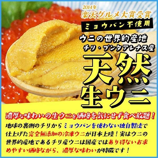 天然生ウニ 100g 冷凍食品 完全無添加 うに 雲丹|sfd-ymd|02