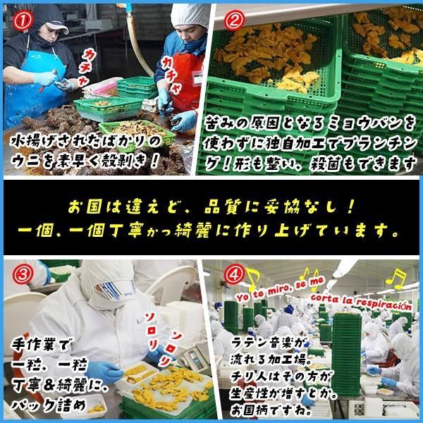 天然生ウニ 100g 冷凍食品 完全無添加 うに 雲丹|sfd-ymd|04