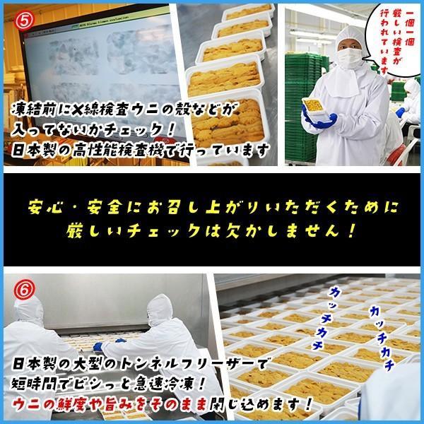 天然生ウニ 100g 冷凍食品 完全無添加 うに 雲丹|sfd-ymd|05