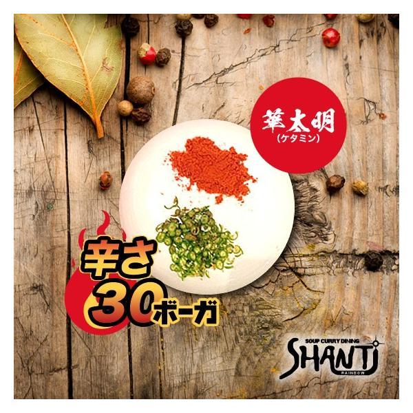辛さ30ボーガ <華太明(ケタミン)>|shanticurry