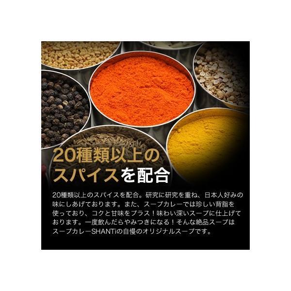 SHANTi(シャンティ)オリジナルスープカレーと 骨付きチキンレッグ shanticurry 03