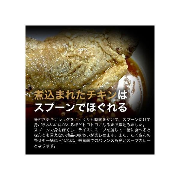 SHANTi(シャンティ)オリジナルスープカレーと 骨付きチキンレッグ shanticurry 05