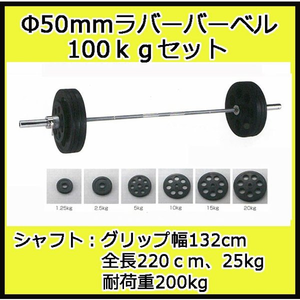 (バーベルセット)ダンノ Φ50mm穴付ラバーバーベルセット 100kgセット D-5882