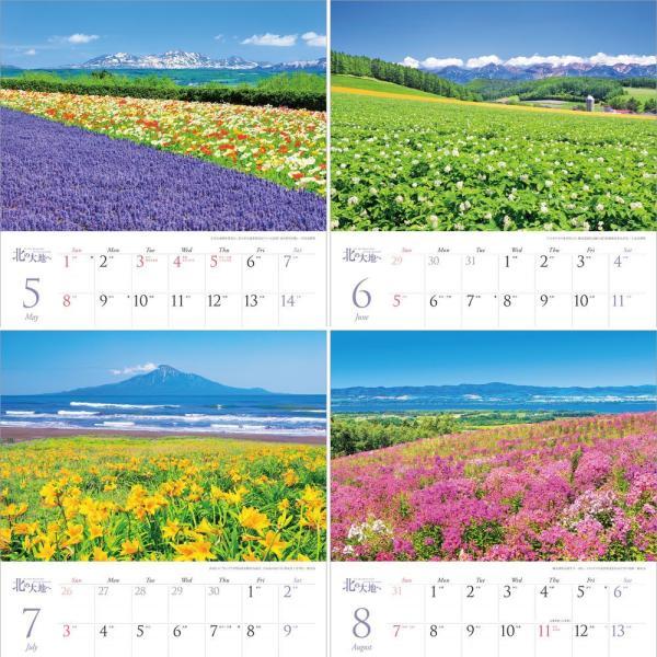 カレンダー2021 壁掛け 「北の大地へ 〜 美しき北海道」写真 お洒落 風景 絶景 北海道 ギフト スケジュール|shashinkoubou|04