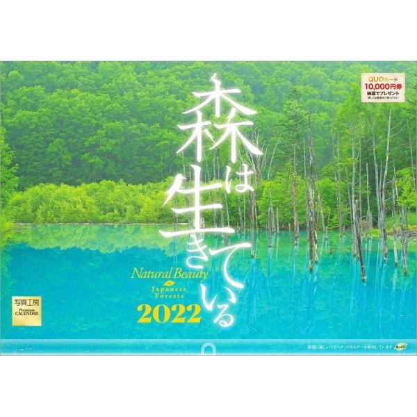 カレンダー2021 壁掛け 「森は生きている」自然 緑 綺麗 写真 秋 風景 絶景 お洒落 スケジュール shashinkoubou