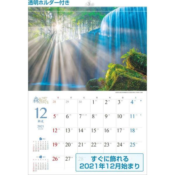 カレンダー2021 壁掛け 「森は生きている」自然 緑 綺麗 写真 秋 風景 絶景 お洒落 スケジュール shashinkoubou 02