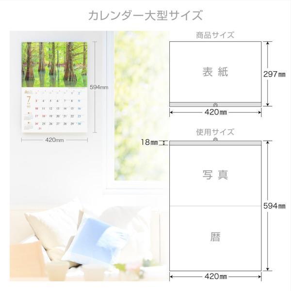 カレンダー2021 壁掛け 「森は生きている」自然 緑 綺麗 写真 秋 風景 絶景 お洒落 スケジュール shashinkoubou 06