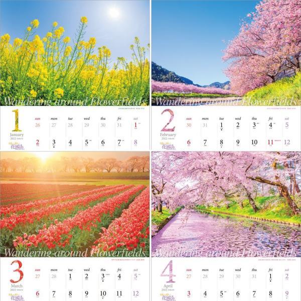 カレンダー2021 壁掛け 「日本一美しい花風景を散歩する」写真 風景 絶景 綺麗 お洒落 ギフト スケジュール|shashinkoubou|03