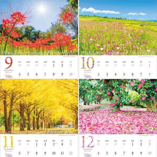 カレンダー2021 壁掛け 「日本一美しい花風景を散歩する」写真 風景 絶景 綺麗 お洒落 ギフト スケジュール|shashinkoubou|05