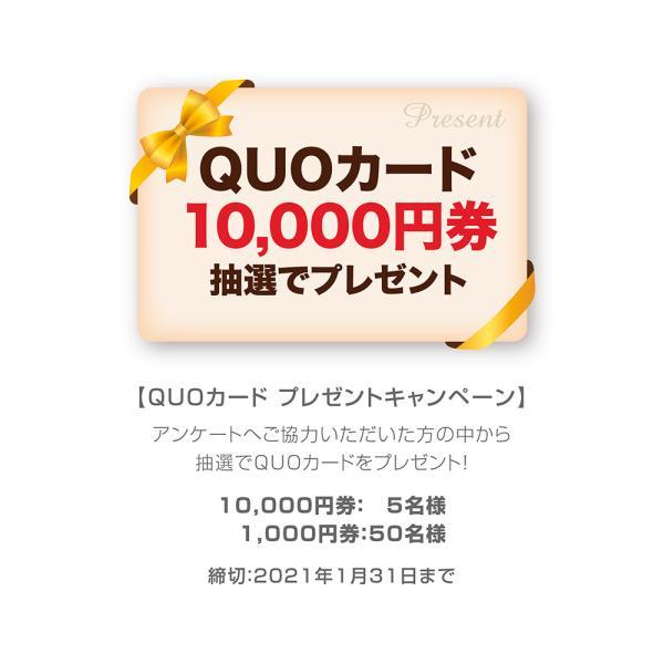 カレンダー2021 壁掛け 「祭り〜日本の情景」写真 風景 絶景 綺麗 お洒落 ギフト スケジュール|shashinkoubou|10