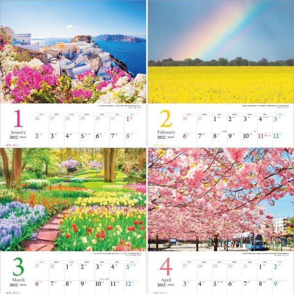カレンダー2021 壁掛け 「世界一美しい花風景を散歩する」写真 風景 絶景 綺麗 お洒落 ギフト スケジュール shashinkoubou 03