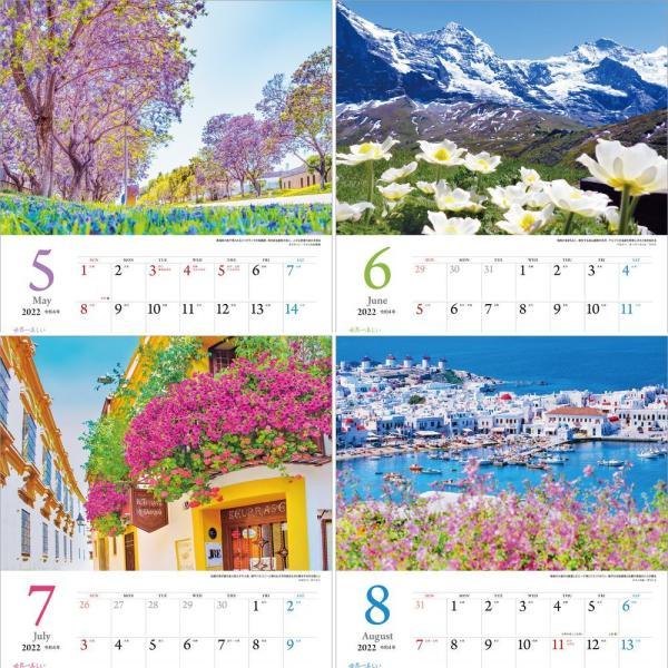 カレンダー2021 壁掛け 「世界一美しい花風景を散歩する」写真 風景 絶景 綺麗 お洒落 ギフト スケジュール shashinkoubou 04
