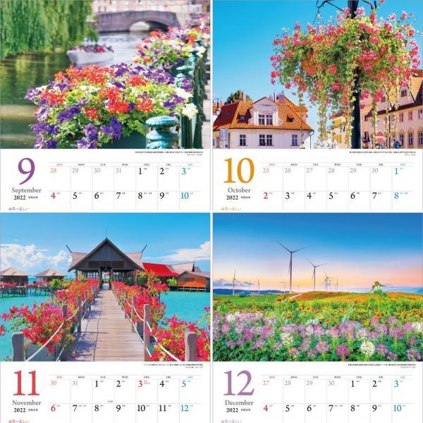 カレンダー2021 壁掛け 「世界一美しい花風景を散歩する」写真 風景 絶景 綺麗 お洒落 ギフト スケジュール shashinkoubou 05