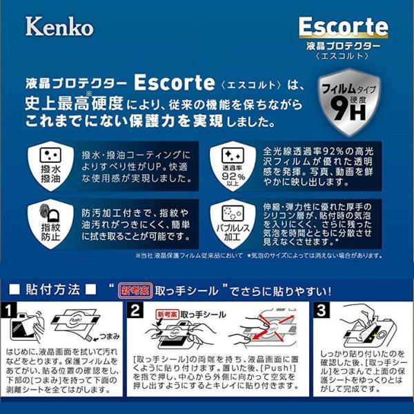 【メール便 送料無料】 ケンコー・トキナー KLPE-RGR3 液晶プロテクターEscorte(エスコルト) RICOH GRIII専用 【即納】