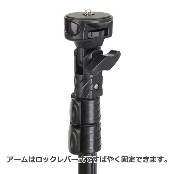 エツミ VE-2174 ビデサポ VS-1 ブラック
