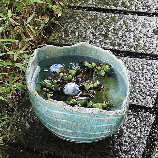 13号水鉢 スイレン鉢 陶器鉢