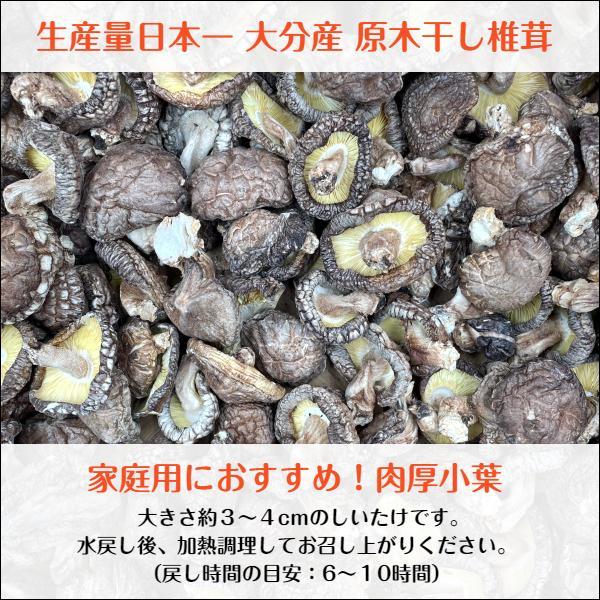 干ししいたけ 大分県産 100g 送料無料 原木栽培 (干し椎茸 干しシイタケ)|shiitake-isekyu|02