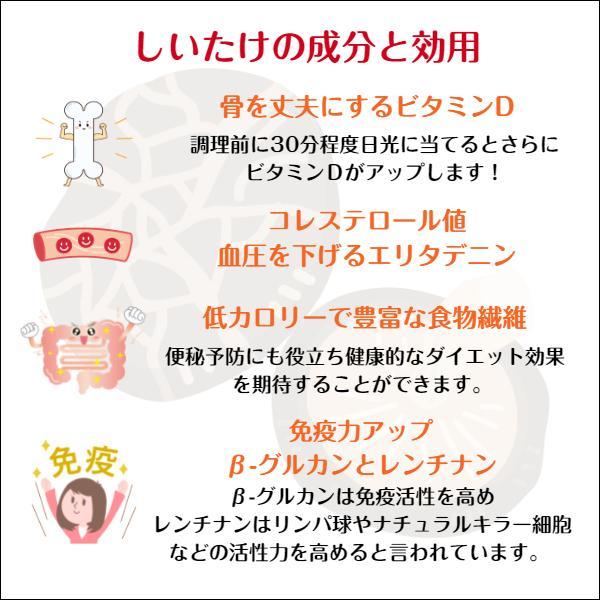 干ししいたけ 大分県産 100g 送料無料 原木栽培 (干し椎茸 干しシイタケ)|shiitake-isekyu|06